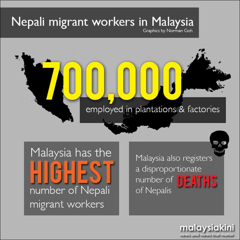 Nepali statistics 1- Malaysiakini