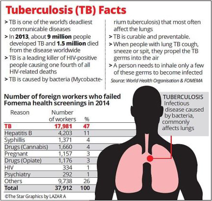 Tuberculosis facts chart 2013